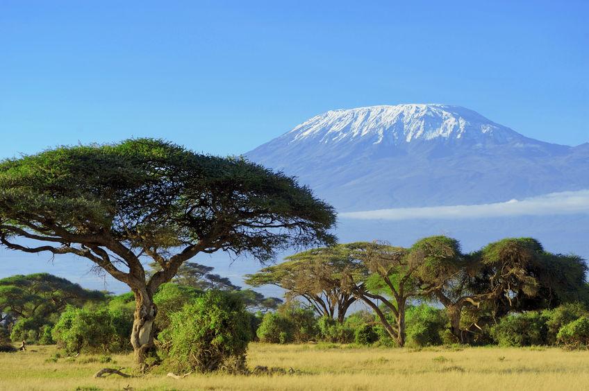 Kilimanjaro=キリマンジャロ=キリマ(山)+ンジャロ(名前)=「ンジャロ山」